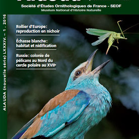 Parution scientifique sur le Rollier dans la revue internationale d'Ornithologie, Alauda photos