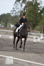 SI_Dressage_Champs_260114_000