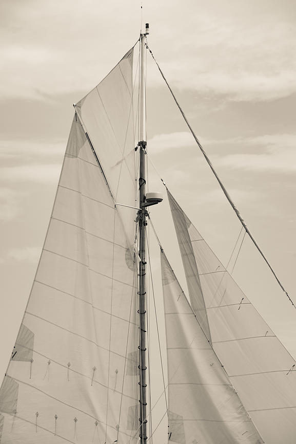 Sailing Portfolio photos