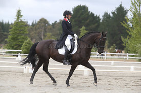 SI_Festival_of_Dressage_300115_Level_7_0277