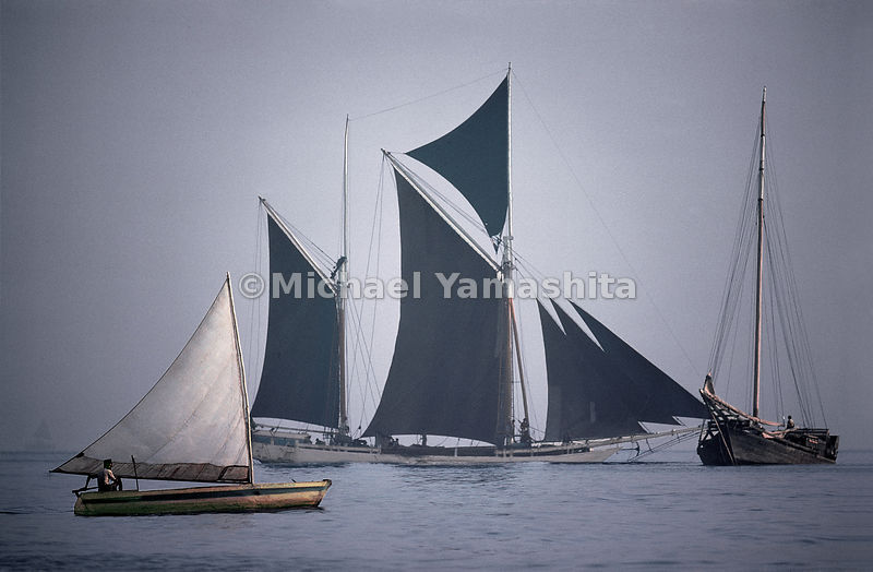 A bugis schooner under full sale in the South China Sea. Indonesia is home to the last great sailing fleet.   Jakarta, Indonesia