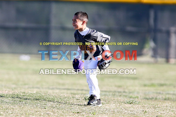04-08-17_BB_LL_Wylie_Rookie_Wildcats_v_Tigers_TS-319