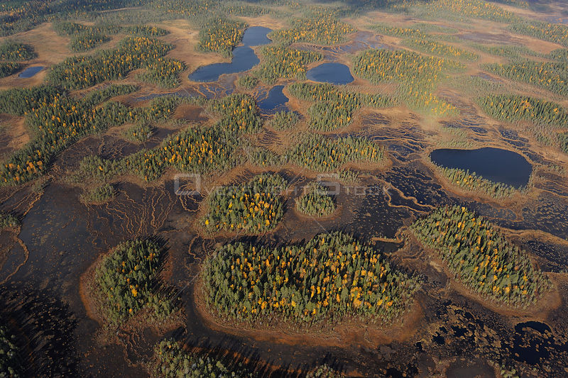 Aerial view of Peat bog, Oulanka National Park, Finland, September 2008