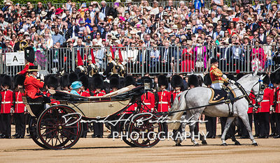Trooping_the_Colour_8729
