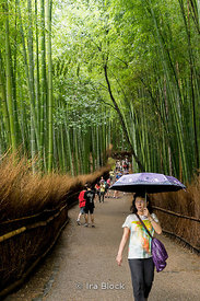 Arashiyama bamboo grove in Kyoto, Japan.
