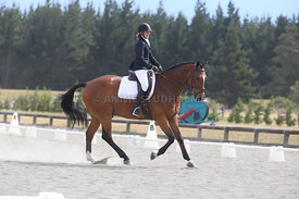 Canty_Dressage_Champs_071214_067