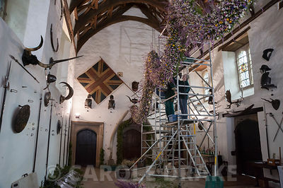 Volunteers on a scaffolding tower constructing the Christmas garland in the Great Hall. Cotehele, St Dominick, nr Saltash, Cornwall, UK
