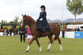 Canty_A_P_131114_Side_Saddle_1237