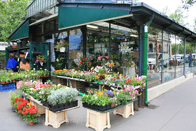 Street market in Paris, France