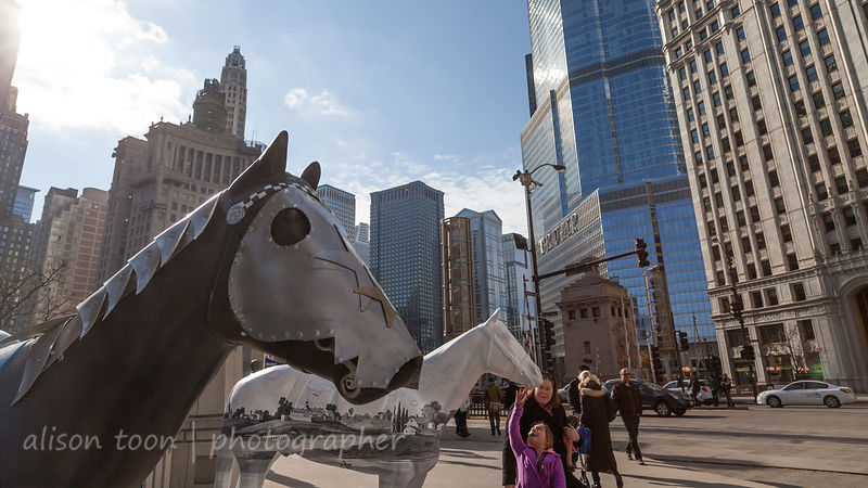 Painted horse statues, Chicago