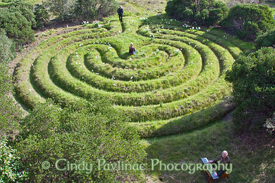 Meadow Labyrinth with Music