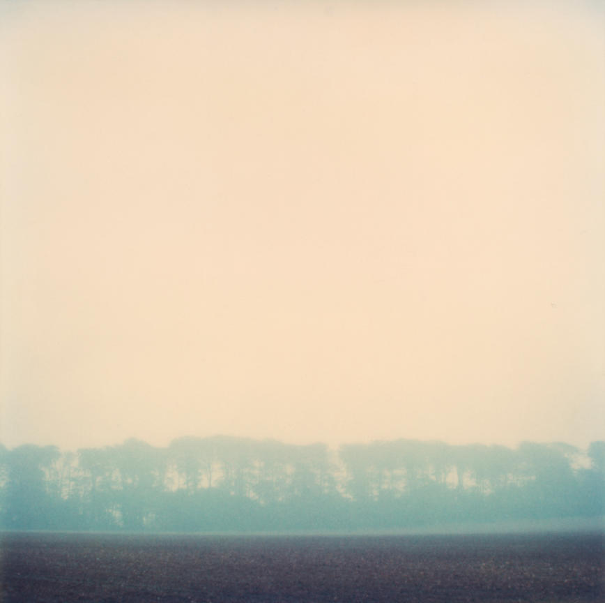 pola_Winter_fields