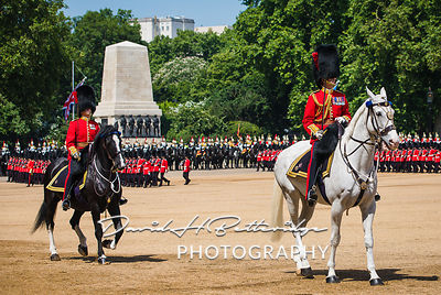 Trooping_the_Colour_8796