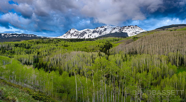 Spring in the Rockies | San Juan Mountains, CO