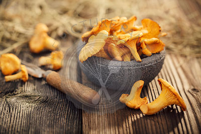 Bowl of chanterelles on а wooden table