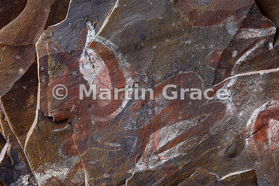 Cave-paintings on the roof of Ana Kai Tangata cave, Easter Island, ceremonial site for the Bird Man cult (Tangata Manu)