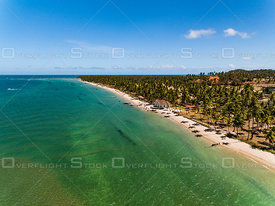 Beach and Palms of Tamandaré Brazil