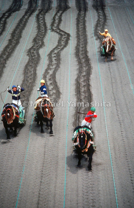 "Draft horse racing in Hokkaido.  There are racetracks and off-track betting centers in most major urban areas.  Many Japenese also enjoy horsemeat, known euphemistacally as sakura no niku (""cherry meat"")"