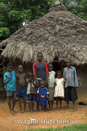 African children facing camera in front of thatched mud hut, Busia, Kenya, Africa