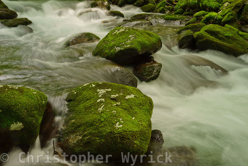 Beautiful shot of the flowing water on Porter's Creek.