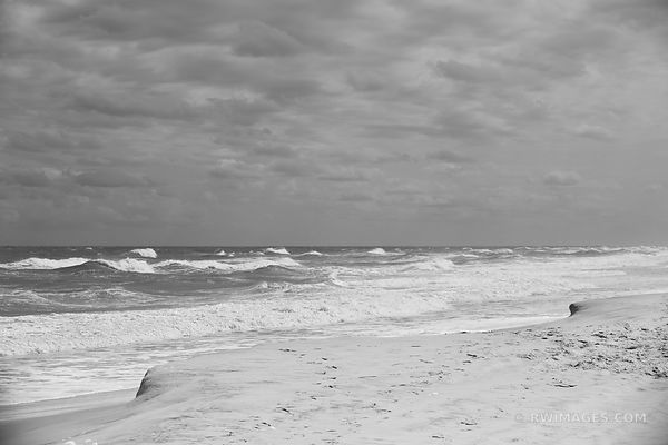 ASSATEAGUE ISLAND NATIONAL SEASHORE MARYLAND BLACK AND WHITE