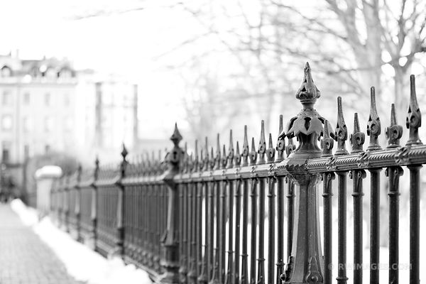 BEACON PUBLIC GARDEN IRON FENCE BOSTON WINTER BLACK AND WHITE