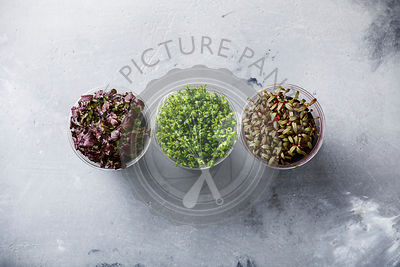 Cress salad of different kind on concrete background