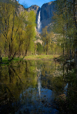 Yosemite Falls in Reflection