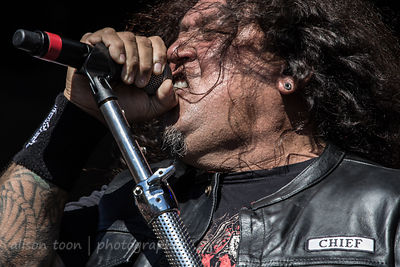 Testament, Aftershock 2013