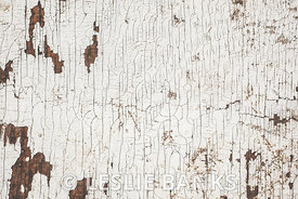 Weathered White Painted Wood