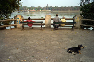 India - Chandannagar - People and a dog watch the Hoogly