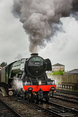 Flying_Scotsman-633