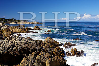 San-Diego-Stock-Photography-Photographer_IMG_9985