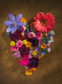 ACutting_Heart_Flowers_4297