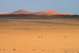 Dry lake in the Sahara desert, Merzouga