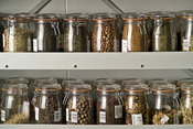 Millennium Seed Bank Project