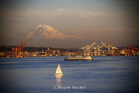 2010 Image of Port of Seattle with Mt. Rainier in the background.