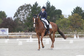 SI_Festival_of_Dressage_310115_Level_8_MFS_1145