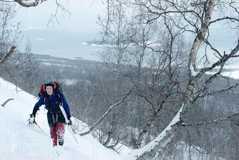 Mountaineer with skis in forest