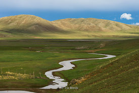 Gun-Galuut Nature Reserve, 130 km (81 mi) south-east of Ulaanbaatar, Mongolia.