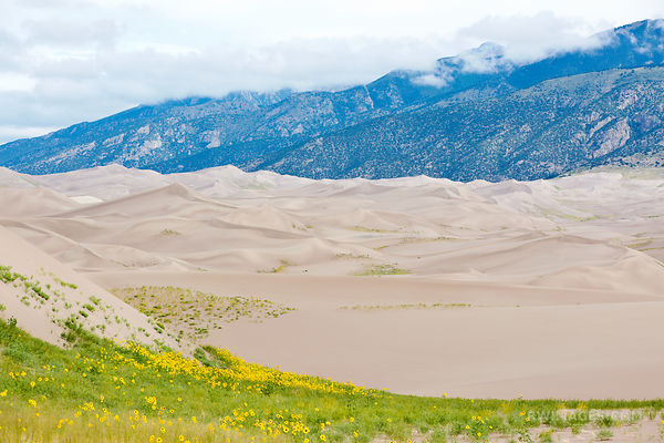 GREAT SAND DUNES NATIONAL PARK COLORADO COLOR