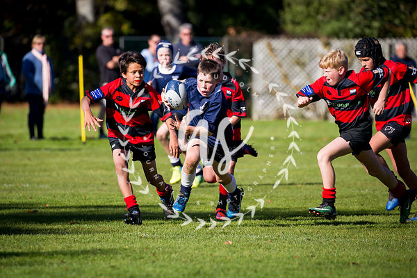Under 11 Waihi V Geraldine photos