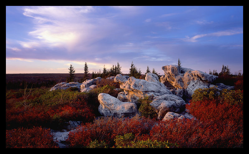 TWL012_D105080_Dolly_Sods_in_Fall_Preview