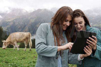 Farm workers in the mountains with digital tablet