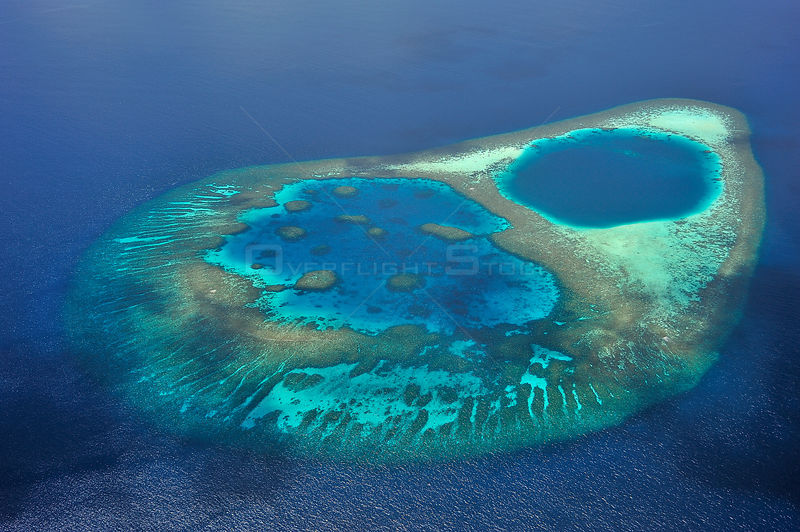 Aerial view of the coral reef which builds a lagoon in the atoll, Maldives, Indian Ocean