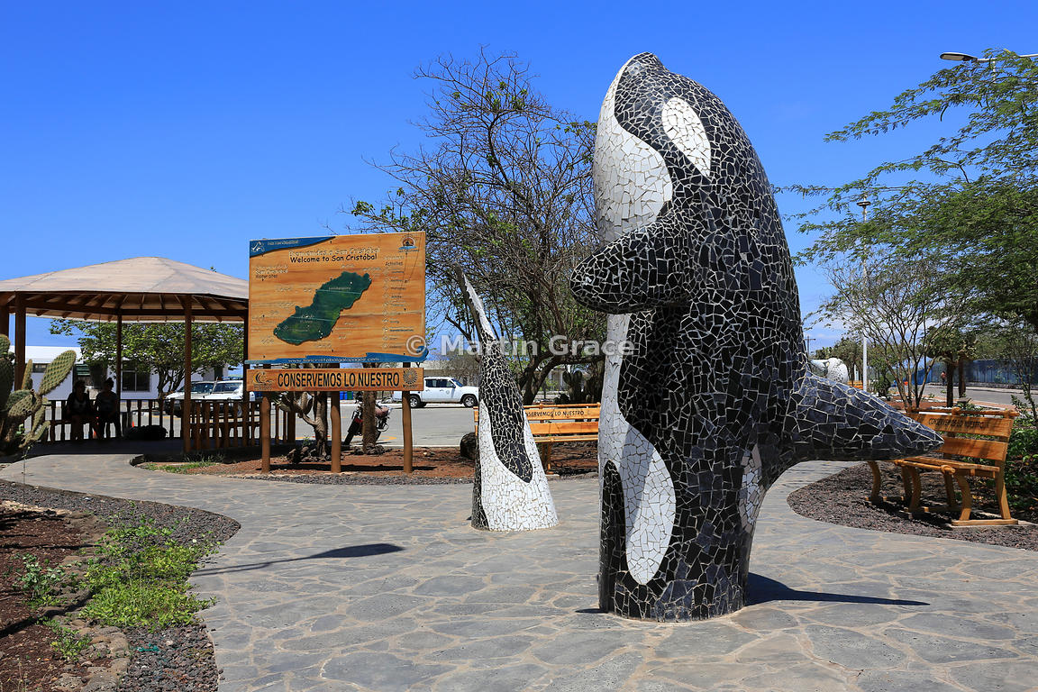 Mosaic-finished sculpture of Killer Whale or Orca (Orcinus orca) with welcome sign to San Cristobal outside San Cristobal airport, San Cristobal, Galapagos