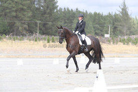 SI_Festival_of_Dressage_310115_Level_1_Champ_0679
