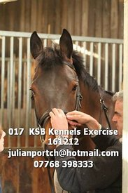 017__KSB_Kennels_Exercise_161212