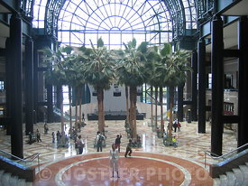 Winter Garden Atrium