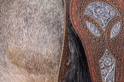 Peruvian Paso, detail of tail leather work